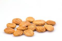 Noyau d'abricot images stock