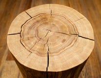 Noyau de rondin contre un plancher en bois Vue d'angle Image stock