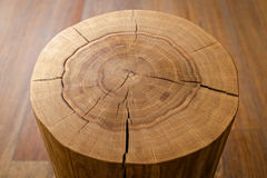 Noyau de rondin contre un plancher en bois Vue d'angle Photographie stock libre de droits