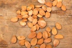 Noyaux d'abricot Photos libres de droits