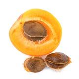 Noyaux d'abricot avec le fruit sur le fond blanc photographie stock libre de droits