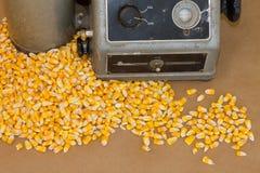 Noyaux de maïs jaunes avec l'appareil de contrôle d'humidité image libre de droits