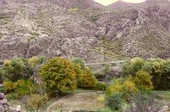 Noyers jaunis d'automne dans le village au pied des montagnes Photographie stock libre de droits