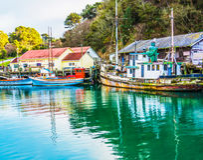 Noyo Harbor Crab Fleet Royalty Free Stock Images
