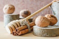 Noz, canela, madeira vista Fotos de Stock Royalty Free