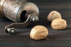 Noz-moscada seca na tabela de madeira escura Fotografia de Stock