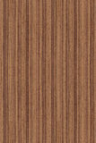 Noz sem emenda (textura de madeira) foto de stock royalty free