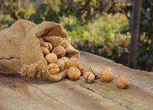 Nozes no saco de serapilheira na tabela de madeira velha Imagem de Stock Royalty Free