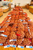 Nozes-pecã para a venda Fotografia de Stock Royalty Free