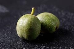 Nozes verdes frescas na pele apenas da árvore Nozes em um fundo preto Macro imagem de stock royalty free