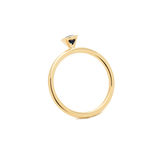 Nozze Diamond Ring Immagini Stock