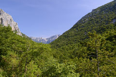 Paklenica National Park Stock Photo