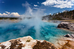 np yellowstone Royaltyfria Bilder