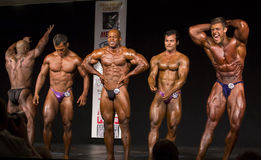2015 NPC Universe Championships. The Five Men's Bodybuilding Open class winners engage in a final freestyle posedown Stock Photography