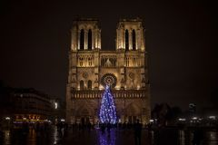 Notre Dame de Paris Cathedral at night with the traditional Christmas tree in front. Royalty Free Stock Photography