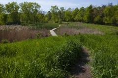 NPV自然中心土和板条木道路穿过草原 库存图片