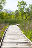 NPV自然中心板条木头道路 库存图片