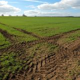 near Great Driffield East Yorkshire England Stock Photography