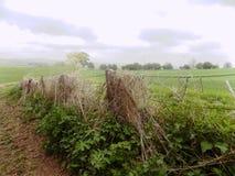 Nr escénico del paisaje Crookham, Northumberland Reino Unido Fotografía de archivo