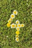 Nr. vier von den Blumenzahlen Stockbild