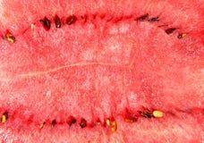 Närbild av vattenmelon Arkivfoton