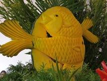 Ânsia dos peixes Fotografia de Stock