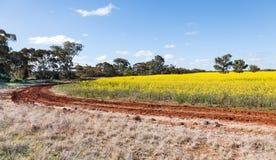 NSW interior cerca de Cowra Imagen de archivo libre de regalías