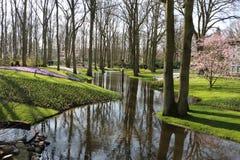 Вид на сад в Nteherlands Keukenhof стоковое изображение rf