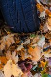 Tire in leaves Stock Photography