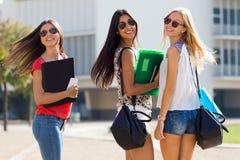 Nätta studentflickor som har gyckel på universitetsområdet Arkivfoton