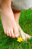 Nu-pieds Photo stock
