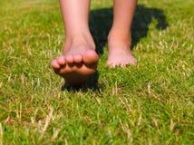 Nu-pieds sur la pelouse Photos stock