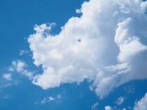 Nuage blanc sous la forme de rhinocéros ou selon l'imagination avec du Ba de ciel bleu Photographie stock