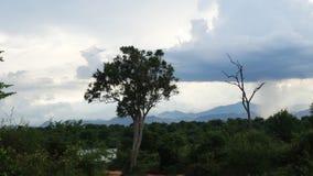 Nuage de pluie Photos libres de droits