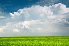 Nuage de pluie au-dessus de plaine verte Photo stock