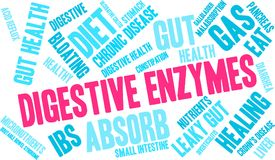 Nuage de Word d'enzymes digestives Photographie stock