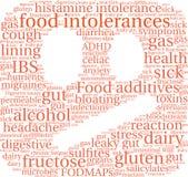 Nuage de Word d'intolérances de nourriture Photographie stock libre de droits