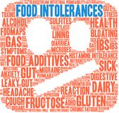 Nuage de Word d'intolérances de nourriture Photos stock