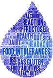 Nuage de Word d'intolérances de nourriture Photographie stock