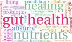 Nuage de Word de santé d'intestin Photos stock
