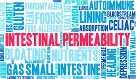 Nuage intestinal de Word de perméabilité Images stock