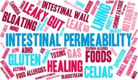 Nuage intestinal de Word de perméabilité illustration stock