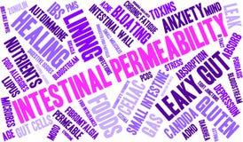 Nuage intestinal de Word de perméabilité Photos libres de droits