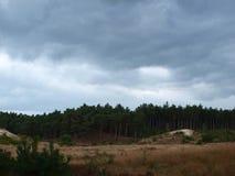 Nuages au-dessus de champ et de forêt Photographie stock libre de droits