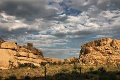 Nuages au-dessus de Joshua Tree photographie stock libre de droits