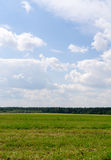Nuages au-dessus du champ et du fond de forêt, nature Photo libre de droits