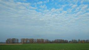 nuages blancs de laps de temps 4k fonctionnant au-dessus du ciel bleu banque de vidéos