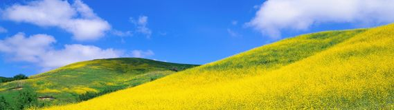Nuages chauds de nadvinuvshiesya de remplaçant du soleil d'été Images stock