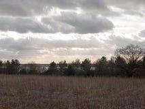 nuages déprimés d'horizon au-dessus de champ de ferme d'automne Image libre de droits