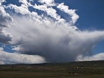Nuages d'orage au-dessus des chevaux Image libre de droits